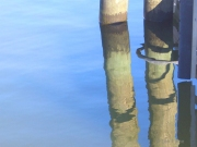 Pilings in Blue Oil