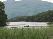 Lough Leane - Killarney National Park