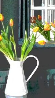 Irish Tulips, Reaching